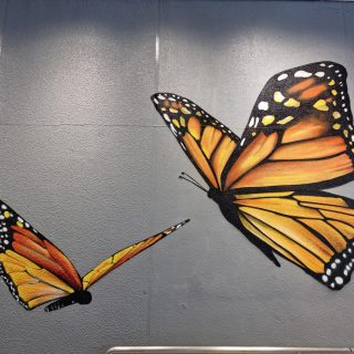 What a beautiful mural this one is. Butterfly effect was happiness!